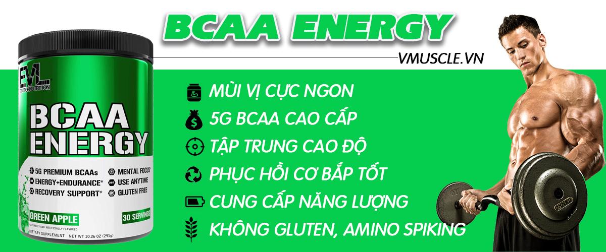 EVL BCAA Energy